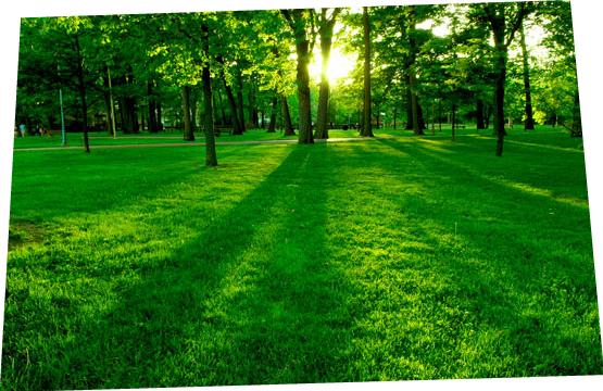 GREEN METALLURGY